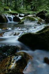 Cours d'ô (annabuni) Tags: vitesse lente cours deau ô rivière ruisseau montagne pyrénées france haute garonne forêt wood humide