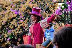 Empezando el desfile (ameliapardo) Tags: medieval alanis sevilla andaucia españa desfile color fiesta gigantes fujixt1