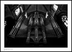 Münster, organ of St. Paulus (petermüller21) Tags: