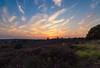 IMG_1263 (Nino319) Tags: landscape nature canon 1018mm wide netherlands veluwe postbank