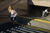 6_DSC8107 (dmitryzhkov) Tags: art city europe russia moscow documentary photojournalism street urban candid life streetlife outdoor streetphotography streetphoto moment light shadow dmitryryzhkov people portrait streetportrait face man sony person stranger moskva color colour colourful colours colorful colors colorworld colorstreet faces motion movement pedestrian shadows lights sunday sunlight day daylight step steps stair stairway crosswalk crossing bald baldman woman women walk walker scene