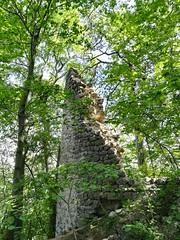 IMG_1005 Ruine Arnstein, Peilstein 13.8.2017 (MQ73) Tags: wandern wald forest wood wienerwald viennawoods hiking österreich austria niederösterreich loweraustria ruinearnstein ruinarnstein catle burg