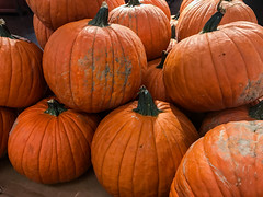 IMG_0249 (ccrzone) Tags: ccrphotography ccrzone ccr ccrpicture fresh fruit photography photooftheday photograph picture picoftheday life livelife lovelife loveit lens traveling travel trip travelphoto travelpicture travelphotography travelling pumpkin