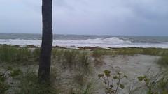 20170909_100054 (immrbill3) Tags: beach florida fortlauderdale ftlauderdale floridabeach ocean