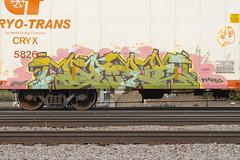 Daze (Psychedelic Wardad) Tags: freight graffiti tnc nsa daze