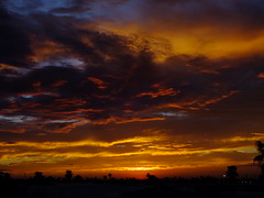 Firey Sky (Scott Douglas Worldwide) Tags: az arizona awesome america amature american adorable awsome perfect peaceful paradise palmtree palm palms palmtress pretty sky s sunrays smiling sun sunset colour closeup c clouds cute classic custom camera cool calming lakewobegon light life landscape lilly love lovely lonely g golden glorious godlike gold god glow