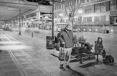 LAST BUS ON A COLD NIGHT IN MINNEAPOLIS (panache2620) Tags: busstop bus publictransportation minneapolis minnesota urban city waiting anticipation cold bright monochrome bw contrast
