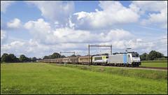 26 juli 2017 - Captrain 186 458 + 1621 - Bathmen (EnricoSchreurs) Tags: captrain br186 186 458 1600 1621 aluminium trein train zug 48870 kijfhoek bad bentheim bathmen railway spoor track juli july 2017 canon eos 6d