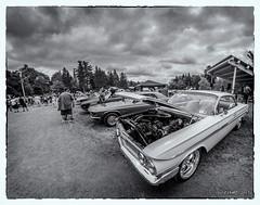 1961 Chevrolet Impala (kenmojr) Tags: 1961 2017 8mm antique atlanticnationals auto bower car carshow centennialpark chevrolet chevy classic d7000 fisheye impala kenmorris kenmo moncton newbrunswick nikon show vehicle vintage wideangle