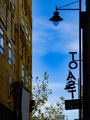 That Sign is Toast (Steve Taylor (Photography)) Tags: toast cafe bar art streetart mural design sign light lamp blue black yellow newzealand nz southisland canterbury christchurch cbd city tree branch music notes realgroovy score screen