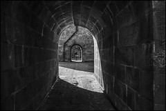 Le viaduc de Morlaix... (De l'autre côté du mirOir...) Tags: mur leviaducdemorlaix morlaix bretagne 29 finistère breizh brittany bzh viaduc pont fr france french nikon nikkor d810 nikond810 noiretblanc noirblanc nb blackwhite négroyblanco monochrome 240700mmf28