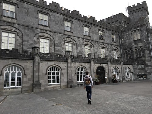 Kilkenny Castle (33)
