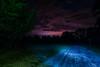 Blue Dream (Graveyardworker) Tags: camping creepy graveyardworker pnw travel washintonstate adventure art dark dosewallipsstatepark landscape light lightart lightpaint lightpainting lightscape longexposure lpwalliance night nightlights nightphotography nightsky nightscape outdoors pacificnorthwest paintedlandscape paintingwithlight sky