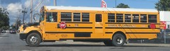 George M. Carroll Inc. #118 (ThoseGuys119) Tags: georgemcarrollinc schoolbus new yorknewburghthomas built ic