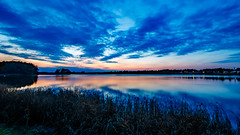 Calm blue (Explore) (Cajofavi) Tags: kalmar sweden water sunset tree forest bay grass bluehour coast reflection fs171001 konst fotosondag