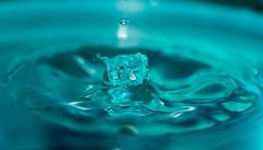 Water drop (Lt_Dan) Tags: canon600d canon100f28macro macro water strobist studio waterdrop splash