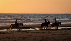 Tres amazonas. Roche - Conil de la Frontera. (Miguel Angel SGR) Tags: roche cadiz conildelafrontera andalucía españa spain europa europe espagne espagna playa beach plage mar sea ocean coast sunset puestadesol ocaso caballos caballo horse horses color colorful colors colour colorido verano ete summer summertime nature naturaleza colores luz light siluetas silhouettes backlight backlighting contraluz paisaje landscape marina seascape seas travel tipico trips turismo tourism touring tournament viajes viajar nikon nikond3000 d3000 miguelangelsgr miguelonphotography