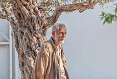 Old man under a wrinkled tree (Pejasar) Tags: aged man tree old light portrait elderly male beirut lebanon