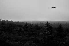 flying hamburger in the middle of nowhere (jooka5000) Tags: outdoor photo flying hamburger starwars forest middleofnowhere trees toyphotography milleniumfalcon toy toyandrealworld ufo
