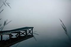 Edit -1-8 (Dane Van) Tags: ccr canadacreekranch dock foggy boring lakegeneva atlantamichigan michigan puremichigan 35mm canon5d 5dclassic