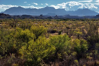 A Changing Look Across the Chihuahuan Desert (Big Bend National Park)