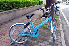 Public Share Bike Shenzhen City China (dcmaster) Tags: public share bike shenzhen city china ofo mobike bluegogo ubicycle lvdc company hre borrow yuan cheap urban street asia loan hire rent renting sharing bicycle pushbike road pavement problem many chinese success popular everywhere investors money transport eco friendly