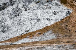 Mammoth Hot Springs (Yellowstone NP)