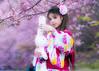 DSC06343 (55's Photo) Tags: 櫻花妹 武陵農場 櫻花 a6500 a7ii チェリー sakura