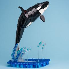 5 Killer whale (timofey_tkachev) Tags: lego moc afol orca killer whale sea