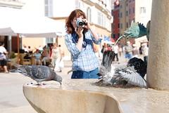 Badplaats Rovinj (Davy Beumer) Tags: duiven rovinj fotograaf fontein water badplaats kroatië istrië badderen pigeons croatia photographer