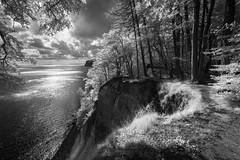 Jasmund (hansekiki ) Tags: rügen jasmund wald nationalpark baum bäume trees infrared infrarot landschaften canon5d