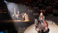 He looks like Aragon from Lord of the Rings.  And like Aragon this guy was a masterful actor. (kuntheaprum) Tags: medievaltimes dinnershow horse sword lance joust nikon d750 sigmaart 50mm f14