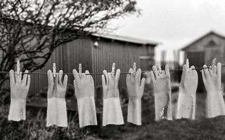 Hung Out to Dry … [Explored]