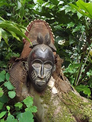 African Punu Mask - Head Dress - Gabon - Tribal Art (TREASURES OF WISDOM) Tags: punumask gabon africanmask basket mask tribalart protection quality wow wonderful whatisthis wisdom ethnographic exhibition eyes ritual yes unseen unusual unknown museum intresting item offering old pagan artefact artifact ancientworld spiritual shamanic spirituality sacred spirit sculpture shamanism shaman fantastic faith figure folk healing love longevity look like collection ceremonial view vibes visit brilliant nice magic mythical mystery mystic cowieshells
