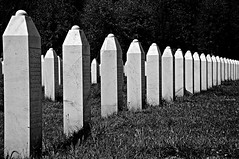 srebrenica-potočari memorial and cemetery for the victims of the 1995 genocide (srebrenica, bosnia and herzegovina) (bloodybee) Tags: potočari srebrenica bosniaandherzegovina formeryugoslavia europe war genocide cemetery memorial memory monument grave tomb graveyard headstone gravestone 1995 bw
