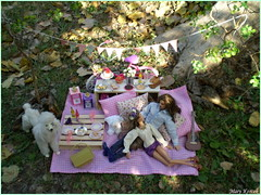 Picnic in the park (9.) (Mary (Mária)) Tags: barbie ken mattel fashion photography photoshoot piknik park dog outdoor scene diorama miniatures basket summer palette water model hervéléger jacksparrow johnnydepp flower flowerheadband pink pastel green lattern handmade marykorcek poodle camera date love roses romance