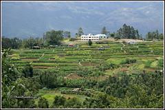 7088 - Kanthallor (chandrasekaran a 40 lakhs views Thanks to all) Tags: kanthallor kerala india nature landscape hills canoneos760d tamronaf18270mmpzd