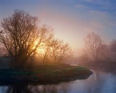 Welcome day by the river Bobrza (fotoswietokrzyskie) Tags: fog spring water nature river poland film analog landscapes dawn medium format kodak ektar 100 bobrza mamiyarz67 6x7 landscape tree mist
