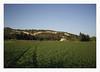 Boulbon - France (marcel.rodrigue) Tags: france boulbon bouchesdurhone marcelrodrigue jkamidnorthcoast nature photography