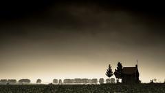 Onze Lieve Vrouw van de Bloeiende Betuwe (Eric Spies) Tags: rüben zuckerrüben bieten suikerbieten knollen kapel herdenkingskapel kapelle maria mariakapel mariakapelle betuwe heuvel heuvelsestraat bemmel niederlande nederland netherlands heuvelkapel fujifilm fujinon xt10 xc1650 veld feld acker field acre akker beet chapel clouds wolken onzelievevrouwe olv onzelievevrouwvandebloeiendebetuwe bloeiende lingewaard mariabeeld slagveld schlacht schlachtfeld weltkrieg wereldoorlog worldwar ww2 wwii monument oorlogsmonument kriegsdenkmal warmemorial memorial war holland guelders gelderland huissen bredelaar deheuvel vergert kapelopdeheuvel landscape landschaft landschap