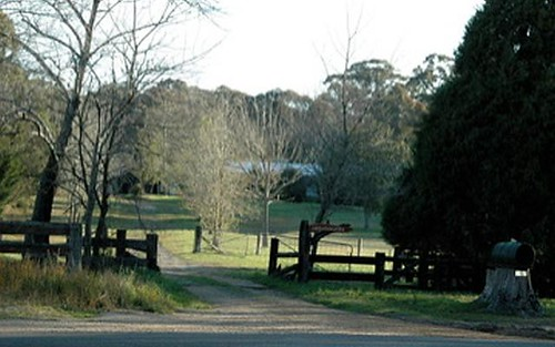 1461 Tyringham Road, Dorrigo NSW 2453