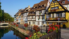 Colmar (Philippe Haumesser Photographies (+ 5000 000 views) Tags: ville city colombages halftimberings fleurs flowers géraniums rivière river eau water rue street arbres trees maisons houses colmar alsace elsass france hautrhin 68 sonyilce6000 sonyalpha6000 sony 169 2016