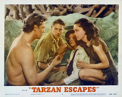 Tarzan Escapes (1936, USA) - 17 (kocojim) Tags: maureenosullivan illustrated kocojim poster johnnyweissmuller publishing advertising film illustration motionpicture movieposter movie