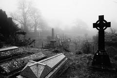 We Appear Missing (JamieHaugh) Tags: bath lansdown beckford somerset england sony a6000 cemetery blackandwhite blackwhite monochrome bw outdoors graves tree graveyard mist fog grass black uk nature