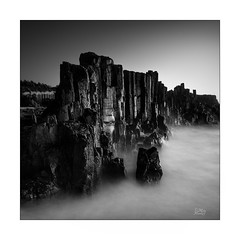 Wet rocks (Mike Hankey.) Tags: coastal published bombo focus sunrise seascape kiama walk