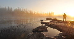 The Morning Glow (Fish as art) Tags: boyandhisdog dogs wilderness sunnymorning magicalriver rivertravel summerfun fisheries research travel rapids north canada deepnorth nikon wideangle sunrise forests water magicalglow