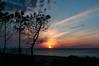 DAN_9473 (gavroche195) Tags: landes gironde eau ocean france sudouest atlantique nikond300 nikonpassion mer lumiere nuages couleur sigma1750 pins foret sable