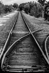 Rail (Joel Bramley) Tags: monochrome bendgio black white railway lines train tracks