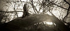 01 Arc in the valley 1 (Poli Maurizio) Tags: sony sonydsch200 disegno art abstract painting sculpture museum gallery virtual artist master famous canvas painter collection drawing impressionism naturalism renaissance expressionism realism baroque sketch garden portrait autumn flower light nature sky spring summer indoor travel water woman yellow blue black white color movement figure macro photo object fine unlimited still life mattepainting fantasy fantastic facebook twitter linkedin pinterest instagram tumblr outdoor atmosferic watercolor technique surrealism digitalart 3dweddingpartyfamilytravelfriendsjapanvacationlondonbeachcaliforniabirthdaytripnycsummernatureitalyfrancemeparisartflowerssanfranciscoeuropechinaflowernewyorkwaterpeoplemusiccameraphone 3daustraliachristmasusaskygermanynewcanadanightcatholidayparkbwdogfoodsnowbabysunsetcitychicagospaintaiwanjulybluetokyoenglandmexicowinterportraitgreenred 3dpolimaurizioartworkredfunindiaarchitecturegardenmacrospringthailandukseattlefestivalconcertcanonhouseberlinhawaiistreetlakezoofloridajunemaywhitevancouverkidstreecloudstorontobarcelonageotaggedhome 3dbwbwdigitalseadaytexasscotlandcarlighthalloweencampingchurchanimalstreeswashingtonrivernikonaprilbostongirlirelandgraffitiamsterdamrocklandscapeblackandwhitecatsnewyorkcitysanromeroadtripurbanhoneymoonocean 3dwatercolorsnewzealandmarchblackmuseumyorkhikingislandmountainsyellowsydneysunhongkongshowgraduationcolorfilmmountainanimallosangelesschoolmoblogphotodogs 3dartdesigndisegnosiciliacalabriabasilicatacampaniamarcheabruzzomoliselaziotoscanaemiliaromagnalombardiavenetofriuliveneziagiuliapiemontevalledaostaliguriatrentinoaltoadigepuglia 3dlandscapepaesaggiolunasolemarenuvolecittàtramontoalbamontagnecollinenebbialuceautomobilearredamentointerniesterninaturamortacieloragazzadonnauomobambinofruttabarca 3dcanigattirinascimentomodelbarocconaturalismomattepaintingfuturismoastrattismocubismosurrealismorealismoiperealismoclassicismorococomanierismoromanticismoimpressionismog