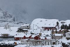 IMG_2583 (alessandro orfanù) Tags: norway lofoten vesteralen hurtigruten winter snow northernlight